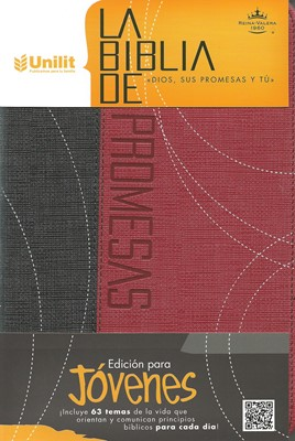 Biblia de Promesas RVR60 Edición Jóvenes (Imitación Piel) [Biblia]