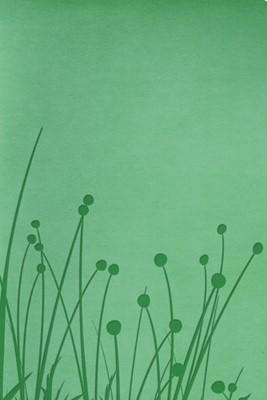 Biblia Tamaño Personal Pradera (Imitación Piel - Verde) [Biblia]