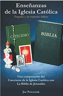 Enseñanzas de la Iglesia Católica (Rustica Blanda) [Libro]