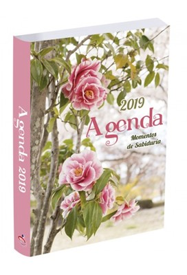 Agenda 2019 Momentos de Sabiduría (Rosas) [Agenda]