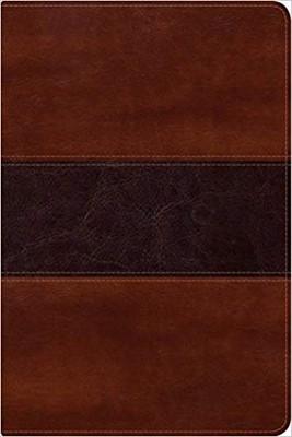 Biblia del Pescador Letra Grande (Piel) [Biblia]