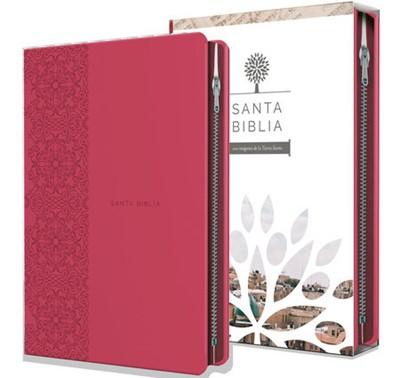 Biblia Tierra Santa RVR60 Letra grande Manual (Simil piel) [Biblia]