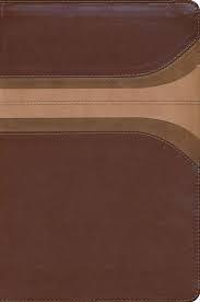 Biblia Arco Iris RVR60 (Simil Piel) [Biblia]
