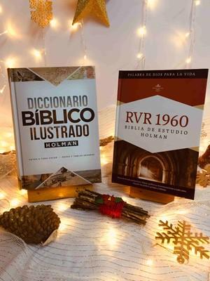 Gran Diccionario de Anécdotas e Ilustraciones + 1 Biblia RVR Revisada Letra grande (Simil Piel) [Bíblia]