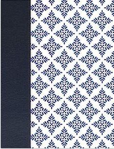 NVI Biblia de Apuntes blanco y azul (imitación Piel) [Biblia]