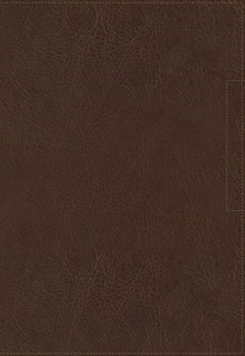 Biblia NVI Palabra de Aliento de Max Lucado (imitación Piel) [Biblia]