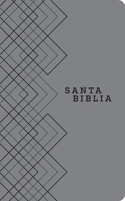 Santa Biblia NTV (Imitación Piel) [Biblia]