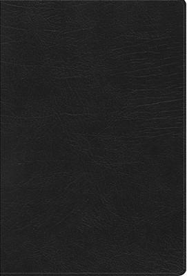 RVR60 Arcoiris (Imitación Piel) [Biblia de Estudio]
