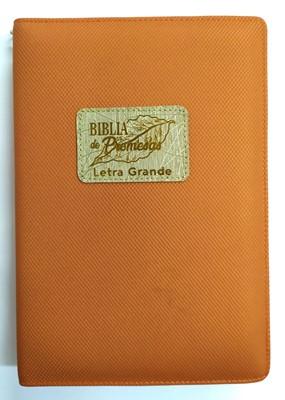 RVR60 de Promesas Letra Grande (Rústica) [Biblia]