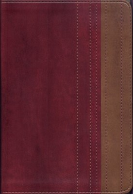 B LECTURA FACIL RVR77 LETRA GRANDE ROJO/CAFE [Biblia]