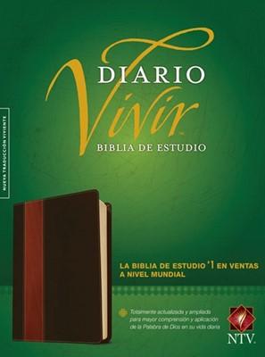 B NTV DIARIO VIVIR ESTUDIO PIEL CAFE (piel)