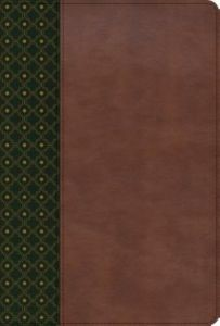 Biblia de Estudio Scofield RVR60 (Imitación Piel) [Biblia]