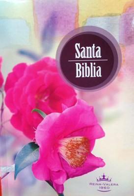 Biblia RVR1960 ecónomica rústica (Rústica) [Biblia]