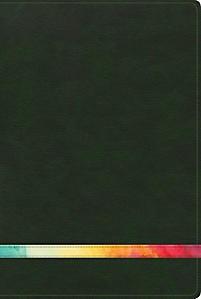 Biblia De Estudio Arco Iris/RVR/Verde Oscuro/Simil Piel (piel) [Biblia]