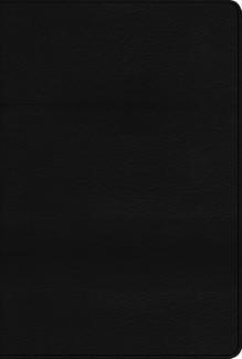 Biblia Arco Iris NTV Negra (piel) [Biblia]
