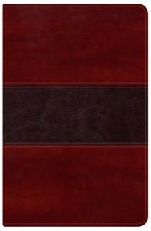 B PESCADOR PIEL CAOBA (simil piel) [Biblia]