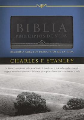 Biblia Principios de Vida Piel Gris (simil piel) [Biblia]