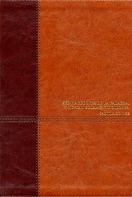Biblia De Estudio Diario Vivir Nueva Edición Café (Simil Piel) [Biblia]