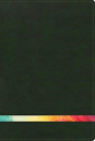 Arco Iris, verde profundo/multi símil piel