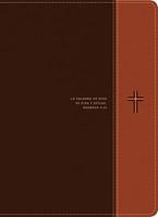 Biblia de estudio del diario vivir RVR60, letra grande