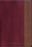 Santa Biblia RVR77 lectura fácil letra grande PIEL