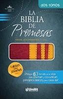 Biblia de Promesas RVR60 (Imitación Piel) [Biblia]