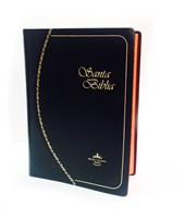 Biblia RVR 1960 vinil negro