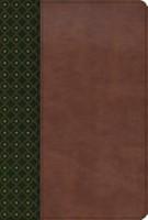 B RVR 1960 ESTUDIO SCOFIELD VERDE OSCURO PIEL NEW (simil piel) [Biblia]