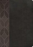 Biblia RVR 1960 Biblia Compacta Letra Grande