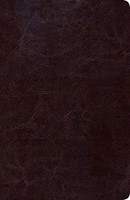 B SCOFIELD RVR60 TAMAÑO PERS. PIEL CHOCOLATE