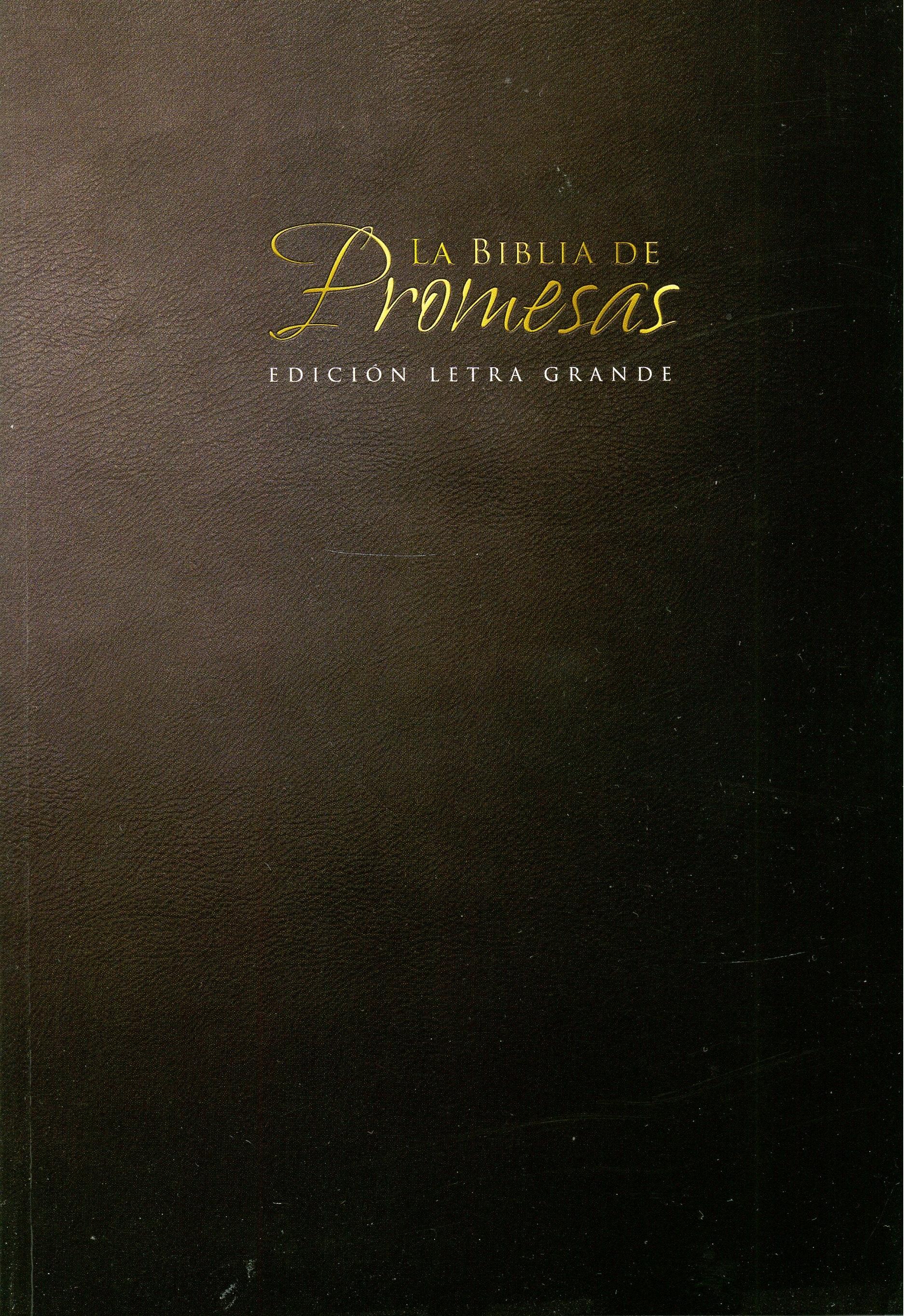 Biblia de Promesas RVR60 Negro