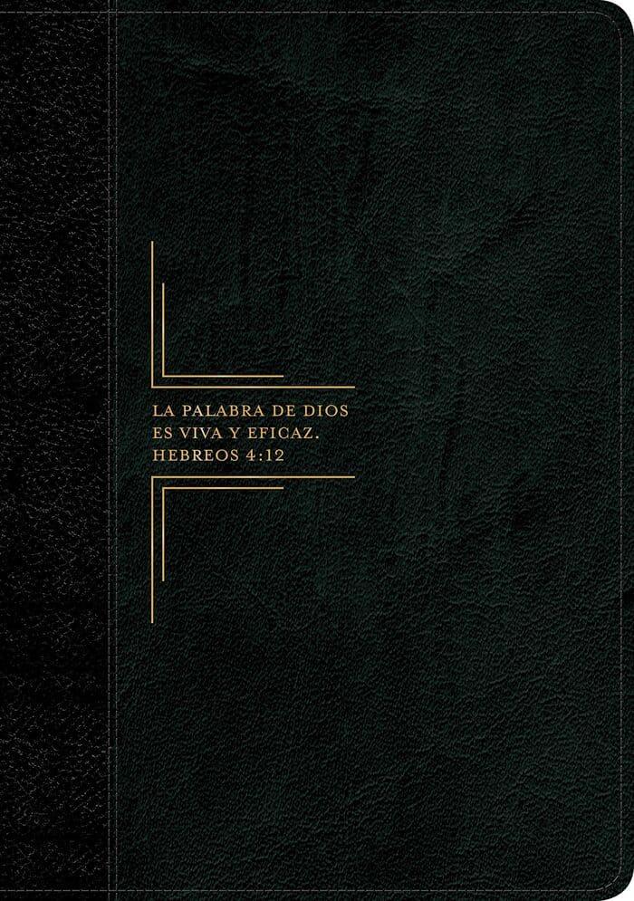 Biblia Diario Vivir RVR60 Letra Grande