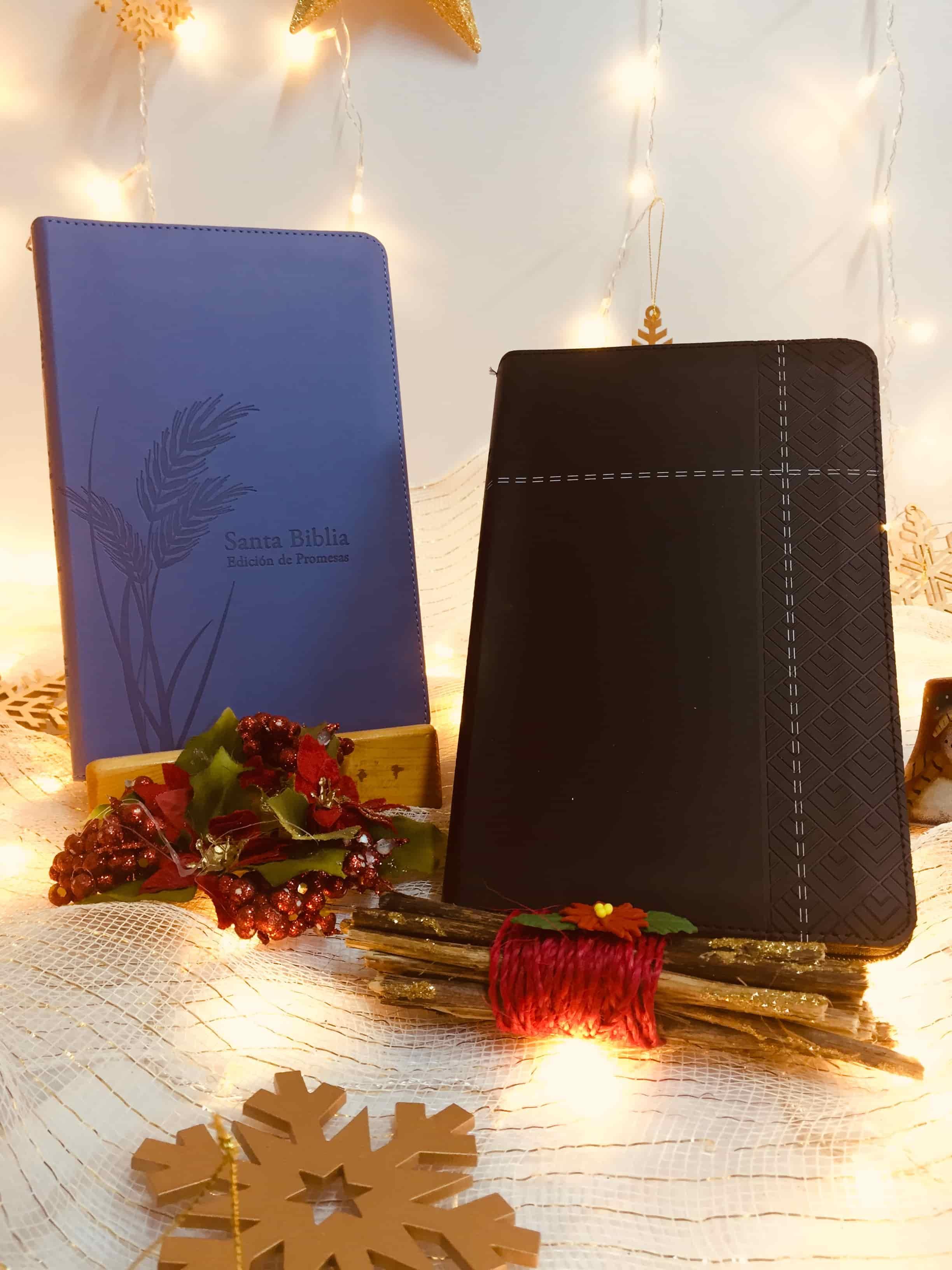 Biblias Precious Moments NVI Ultrafina Morada con cierre