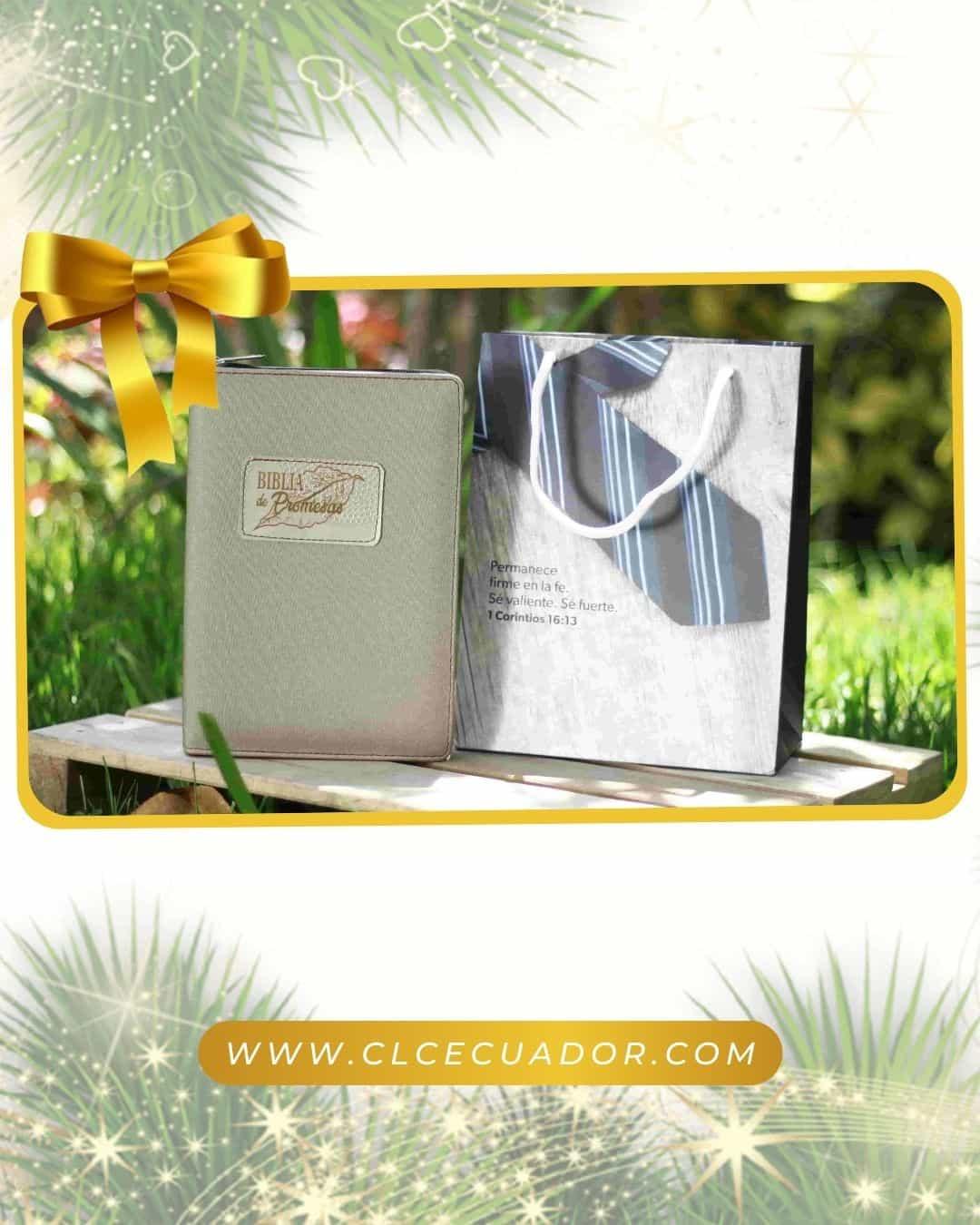 Biblia RVR60 Promesas Beige Acolchada con Cierre