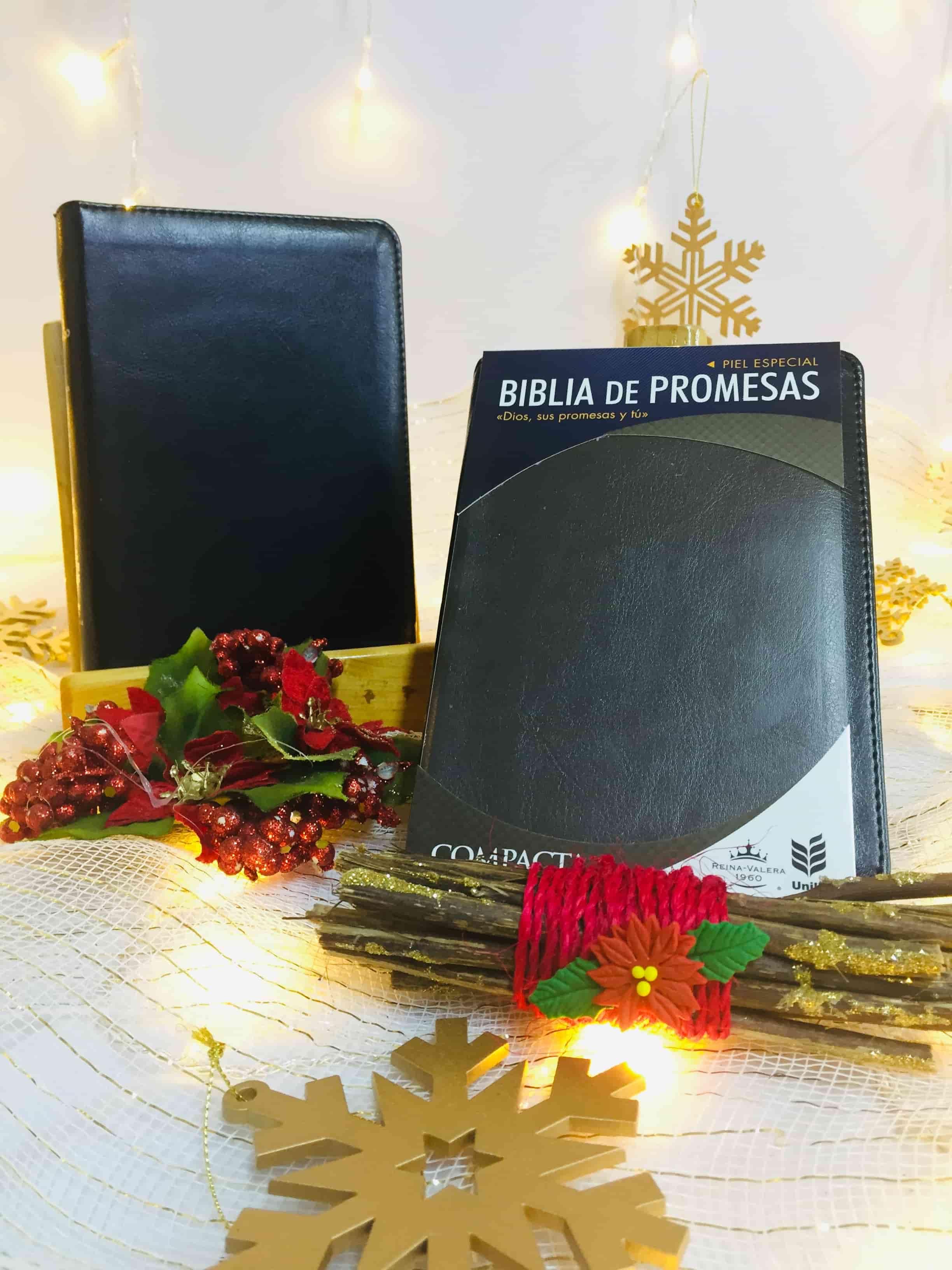 Biblias NVI Ultrafina Compacta Símil Piel Negro