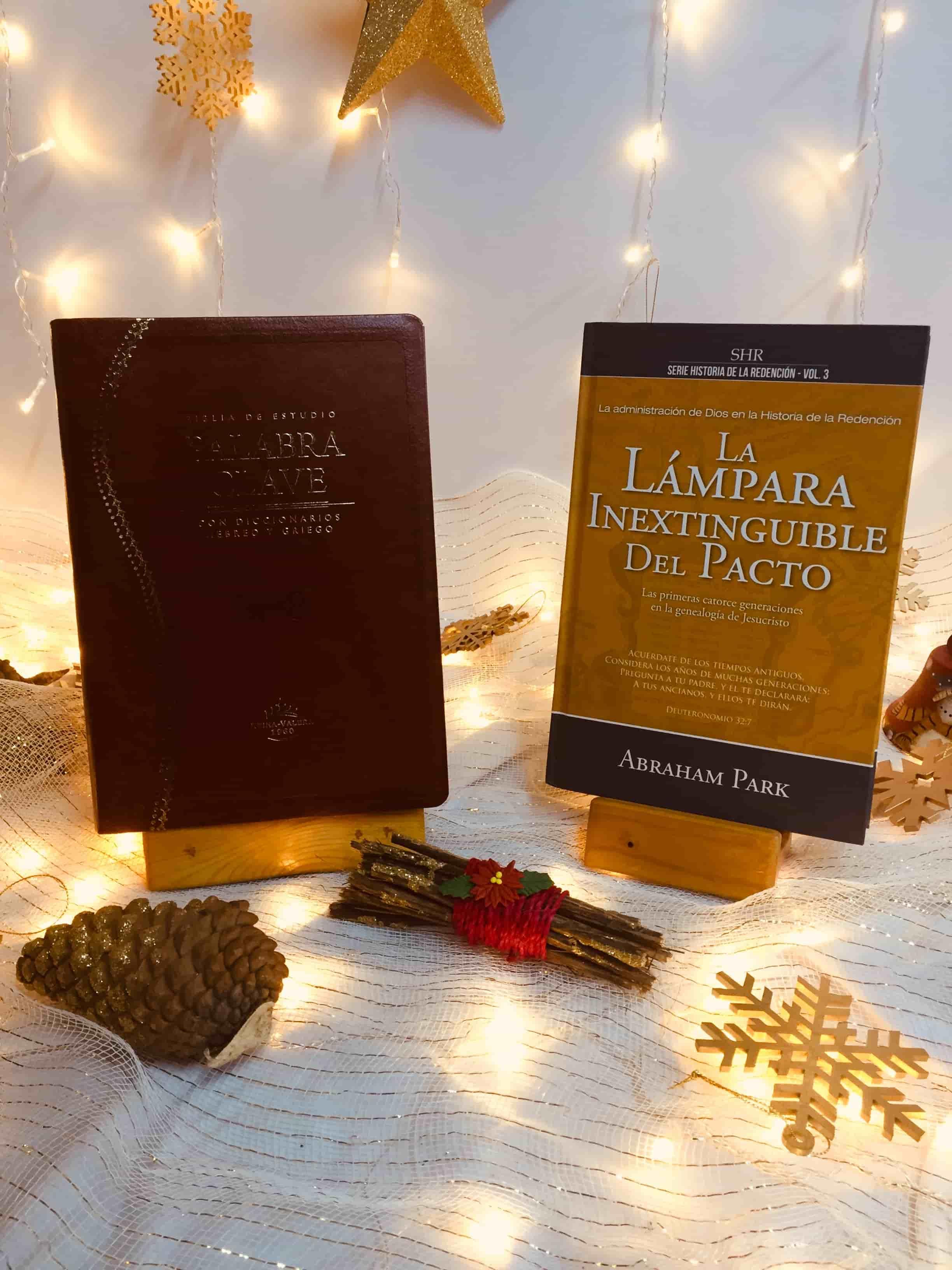 Diccionario Bíblico Eerdmans + Biblia RVR Revisada Ultrafina