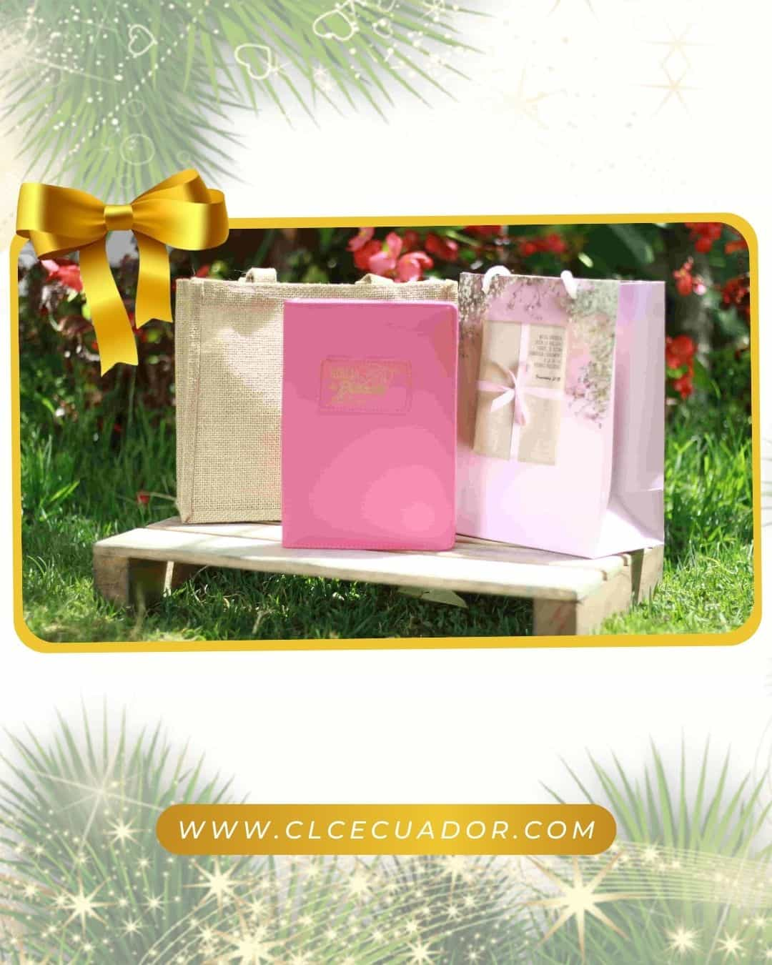 Biblia RVR60 Promesas Rosa Acolchada con Cierre