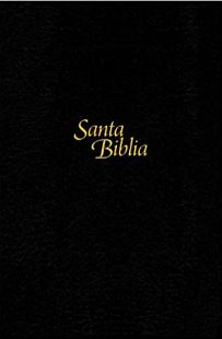 Santa Biblia NTV, Edición personal, letra grande