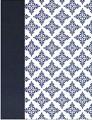 NVI Biblia de Apuntes blanco y azul